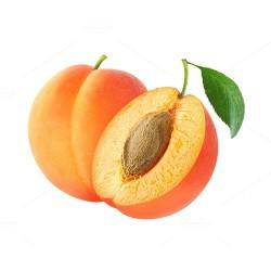 Abricot Rouge du Roussilon